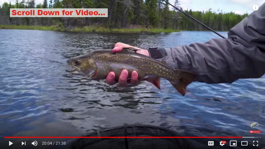 The New Fly Fisher Episode is Live & 2018 Season Photos / Contest