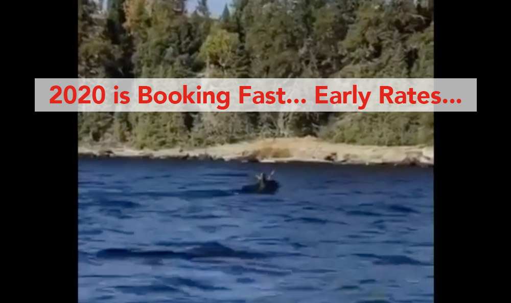 "5 Weeks left for ""Early"" booking, Sandy Bay news"